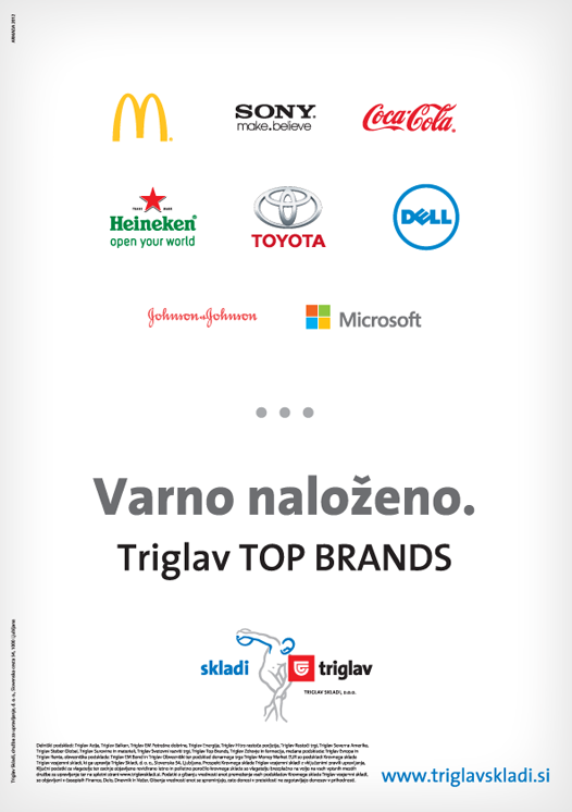 01 ARMADA_WEB 2012_Projects Details_TRIGLAV BRANDS_oglas